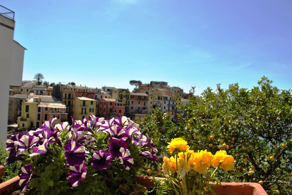 Boutique Hotels Liguria