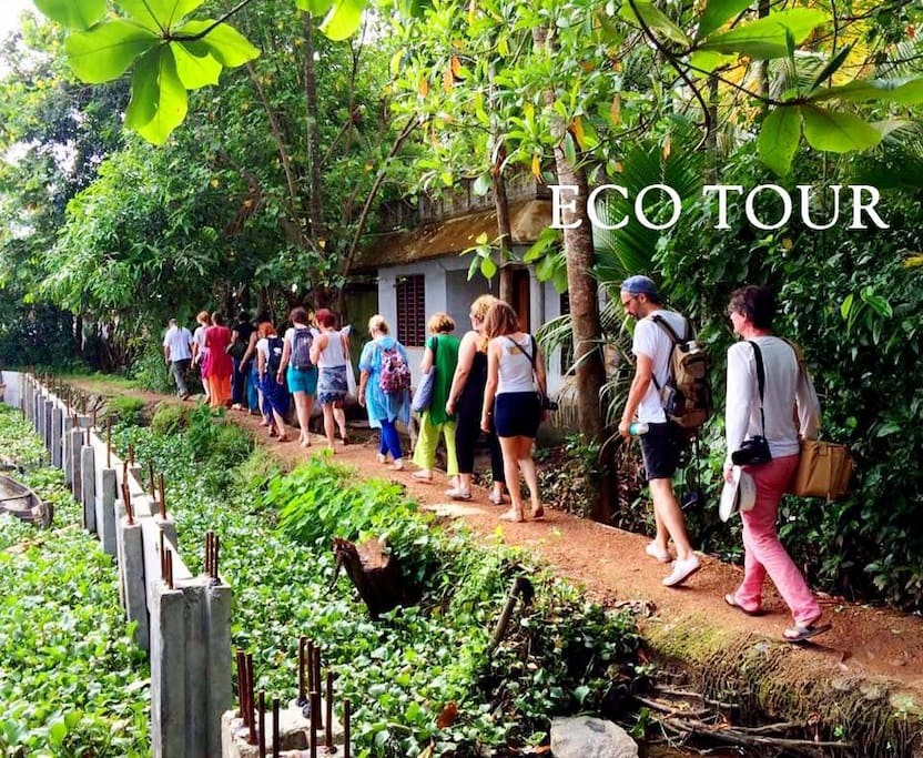 Kuttanad Tour Package
