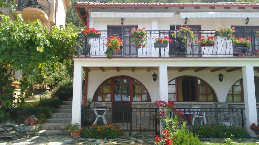 Ethno House Villa Dragija