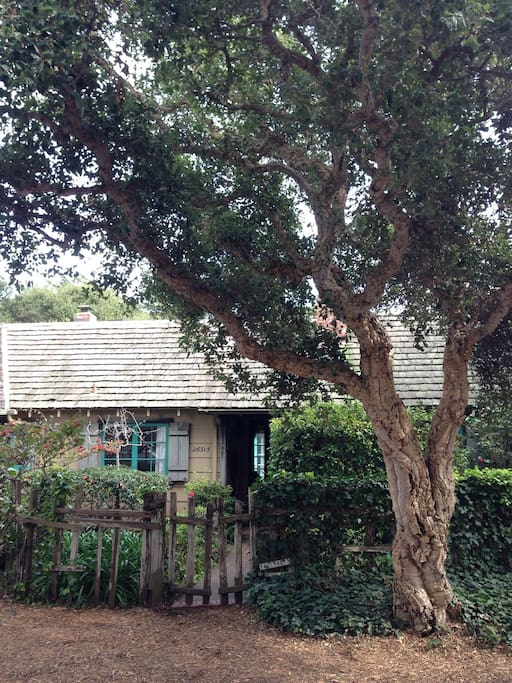 The main entry to Falmouth Cottage, with cork oak tree at the front gate