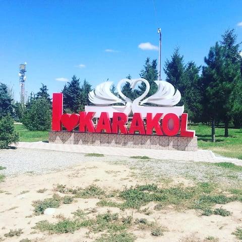 Уютный дом и кольцевой тур по Кыргызстану!!!!!