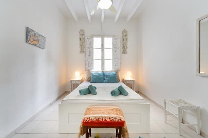 Charming apartment Ibiza center