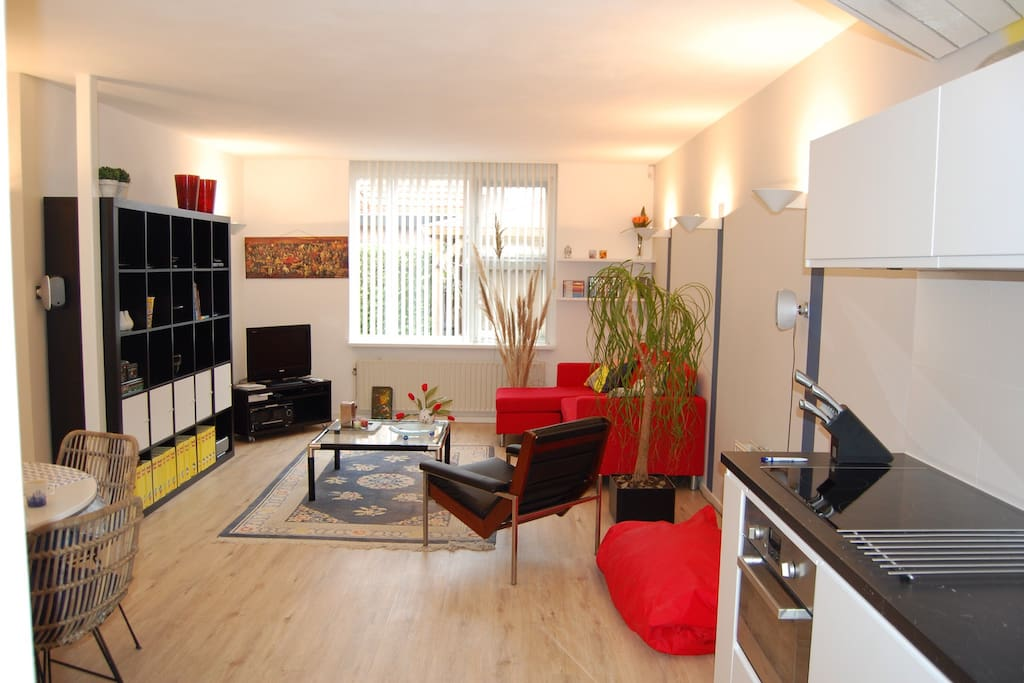 Apartment nearby amsterdam and schiphol airport for Appartamenti in centro amsterdam