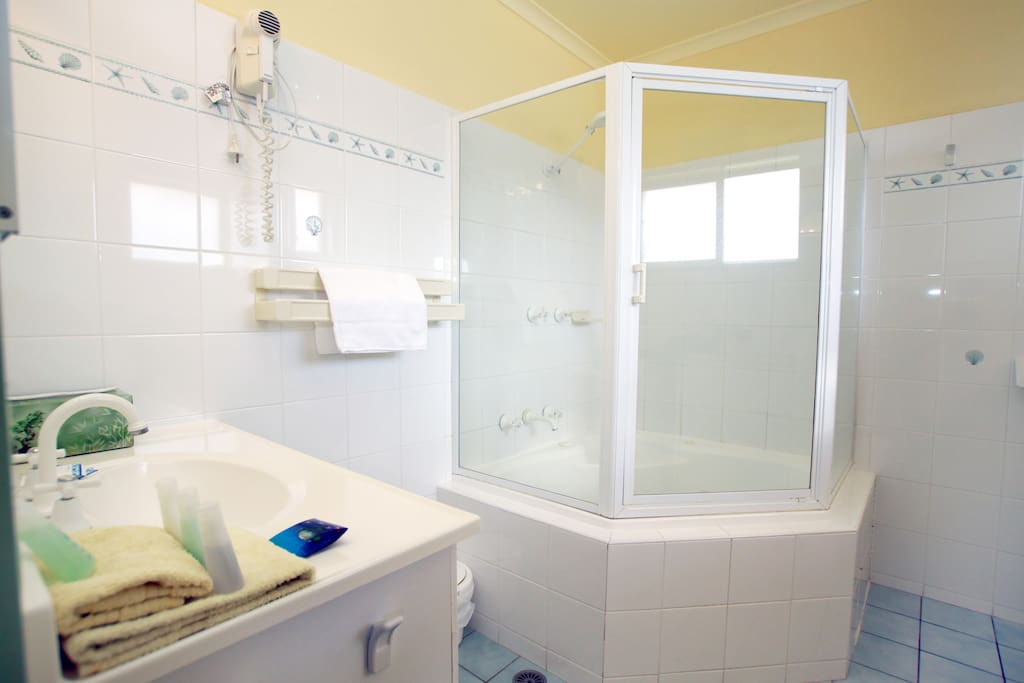 Bathroom with shower over small spa