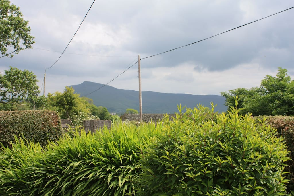 The view from the front garden with Benbulben in the distance