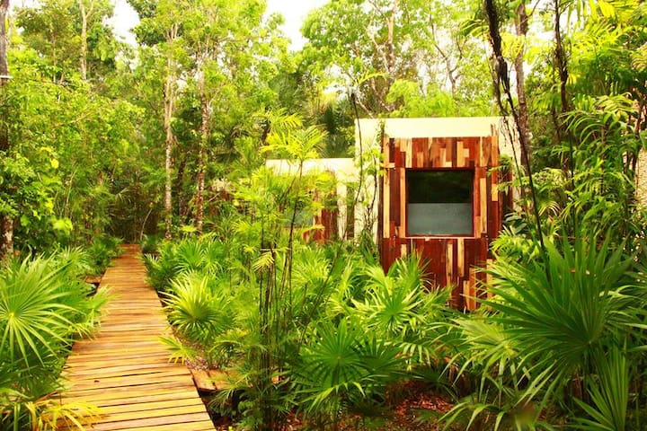 Ozen cocom. Amazing jungle retreat - playa del carmen