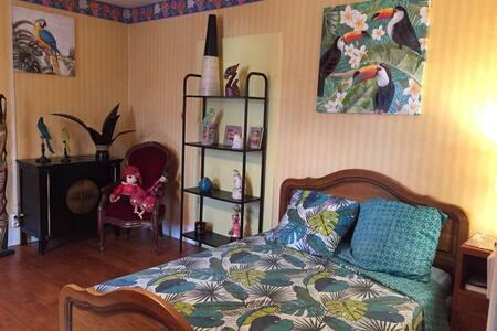 Chambre aux oiseaux