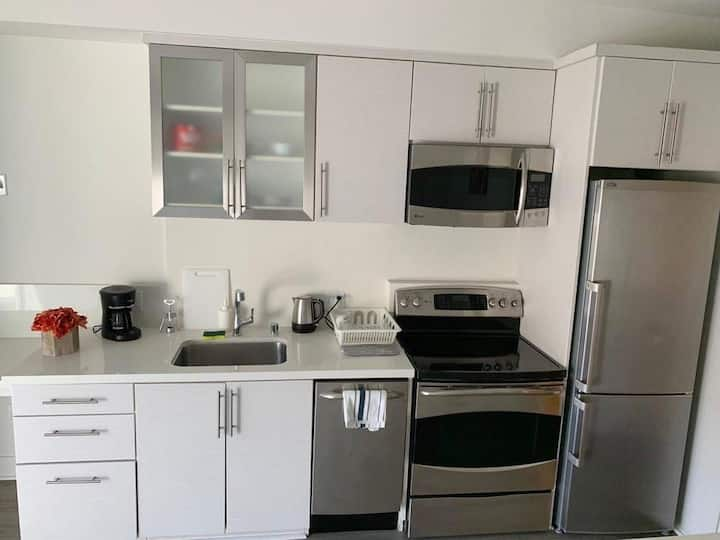 Santa Monica Luxury apartment