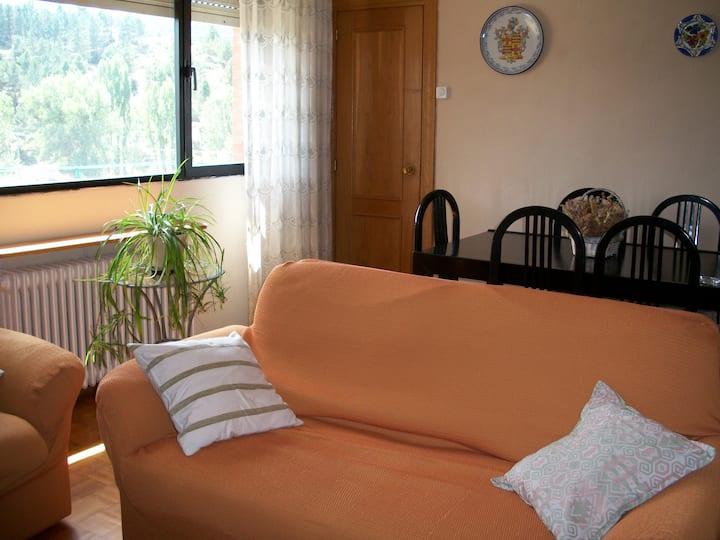 Piso 2 habitaciones con vistas al pinar