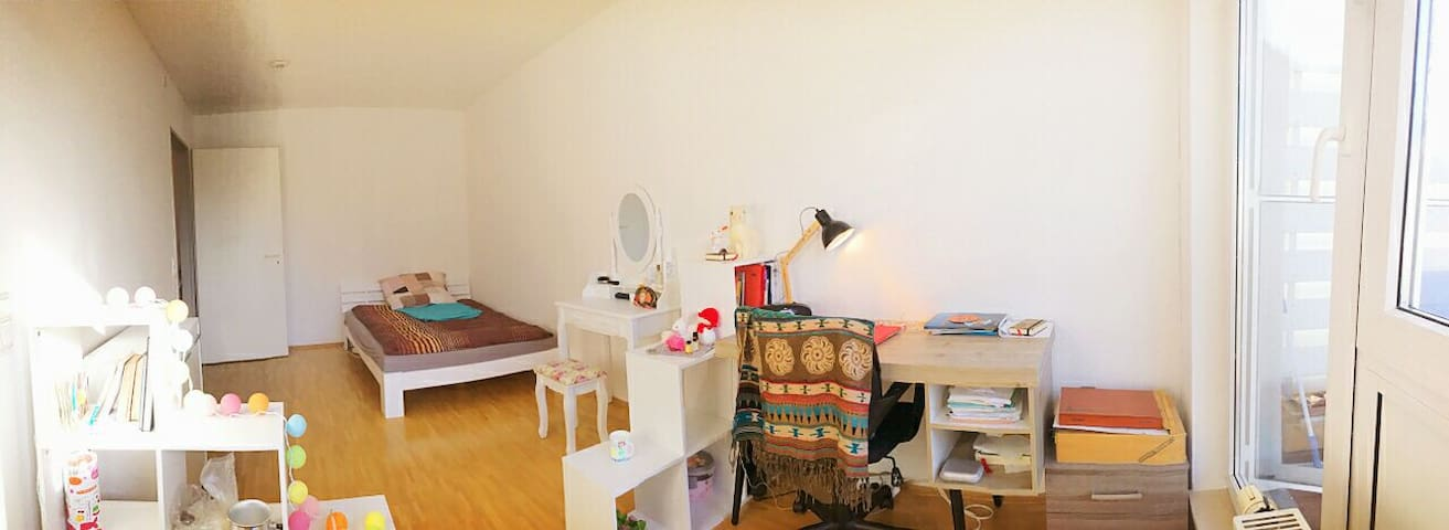 Cozy Room in City Appartment with Roof Terrace - Münster - Apartamento