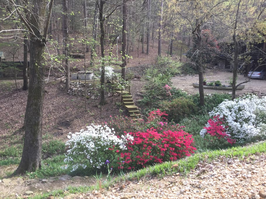 One of any outdoor flower viewing areas