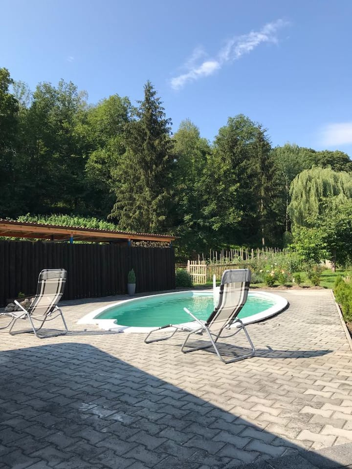 Krásná chata u lesa s bazénem a krbem