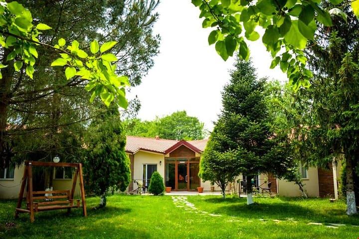Kartepe'de Sakin Bir Doğa Oteli