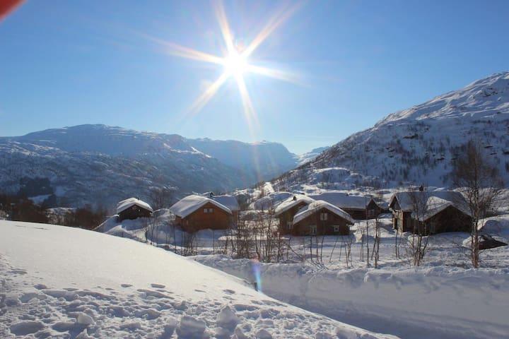 Ski in Apartment, Røldal Alpingrend