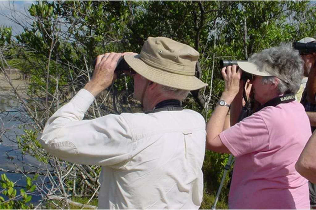 Senderismo para observación de Aves