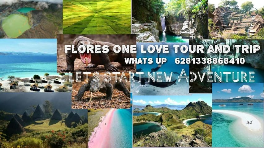 Flores One Love Homestay & Tour