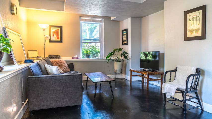 Sparkling Clean Apartment in Gorgeous Neighborhood