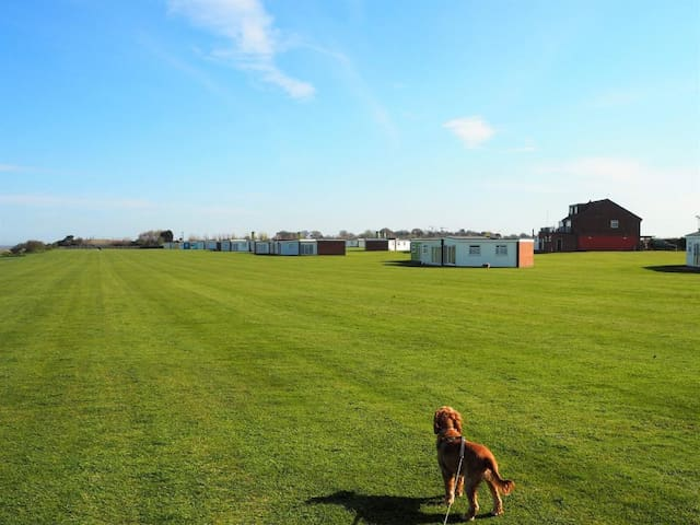 Dog Friendly Beach Holiday in Winteron-on-Sea - Winterton-on-Sea - Lomamökki