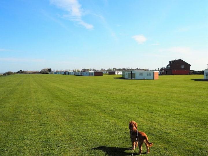 Dog Friendly Beach Holiday in Winterton-on-Sea