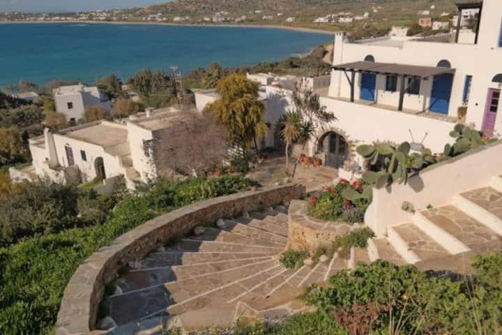 Ocean View with Garden