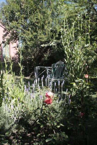 Jardin de lavandas, rosas y achicorias , ideal para unos matecitos a la sombra de unos espinillos.