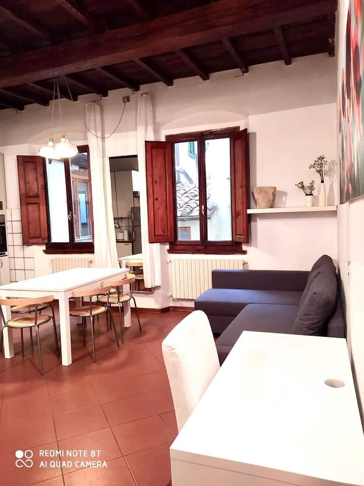 San Gallo apartment in the heart of Florence