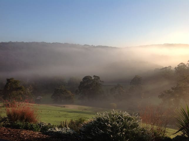 Morning mists for early risers