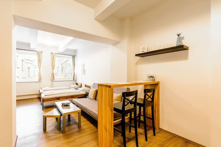 Hotel-like studio in a center of Prague for you