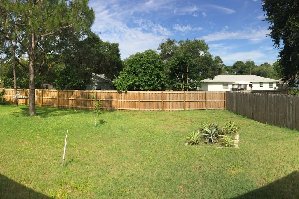 Gorgeous back yard with a patio (not pictured)