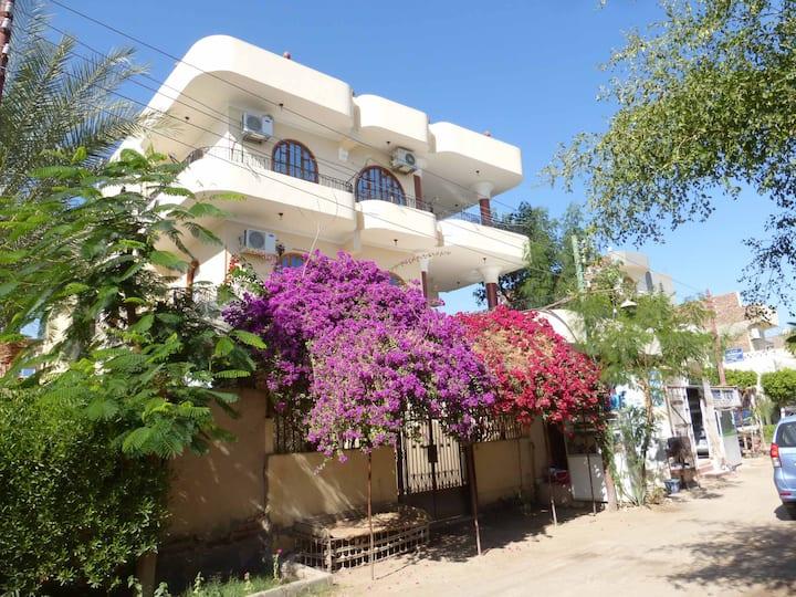 Louxor, Terrasses et jardins avec vue sur le Nil