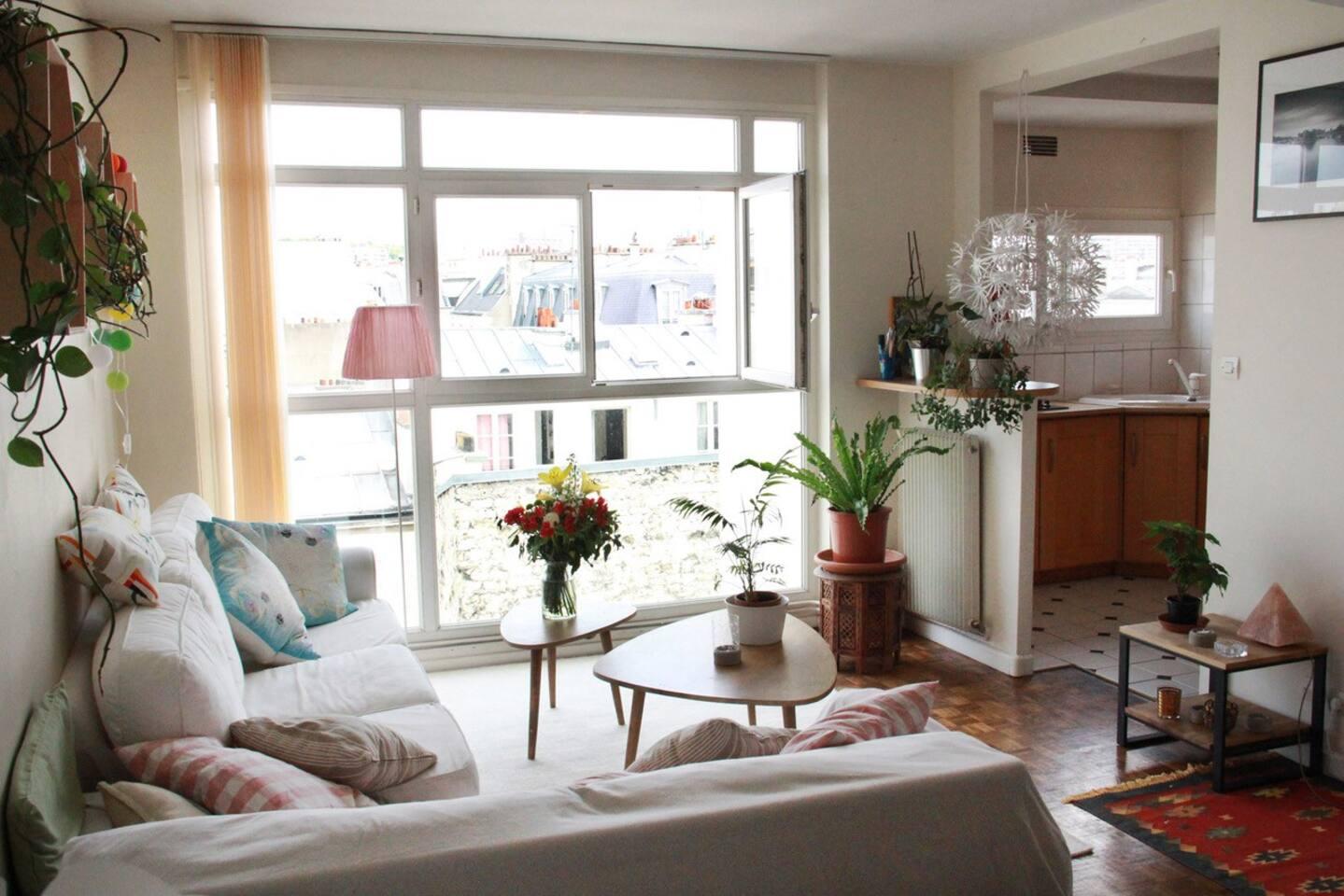 Salon coté cour au calme donnant sur les toits de Paris sans vis à vis !