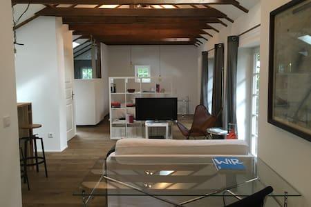 Modernes Loft mit Garten
