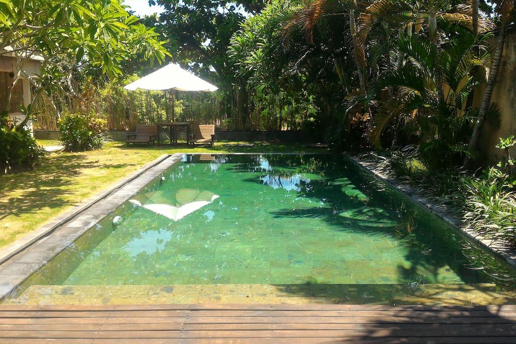 Private Pool & Garden