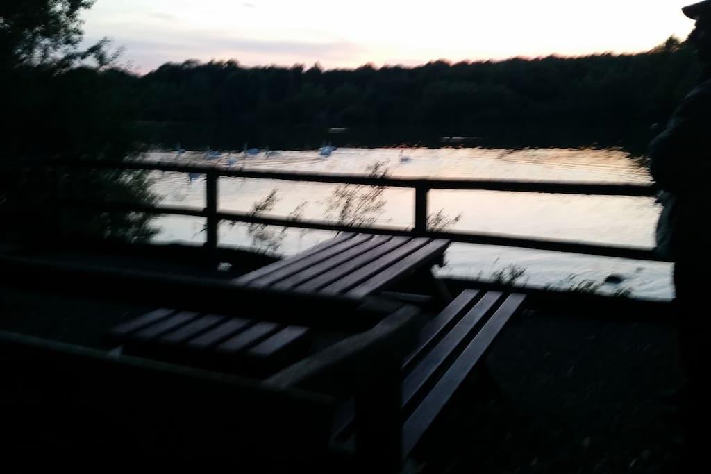 Local lake view.