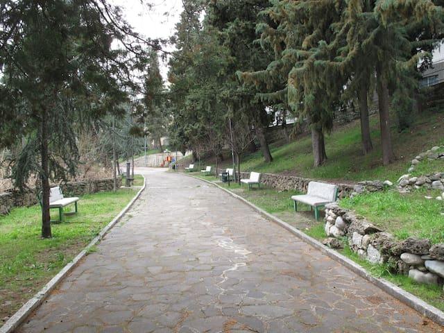 Parco pubblico appena fuori dalla porta della casa dalla casa
