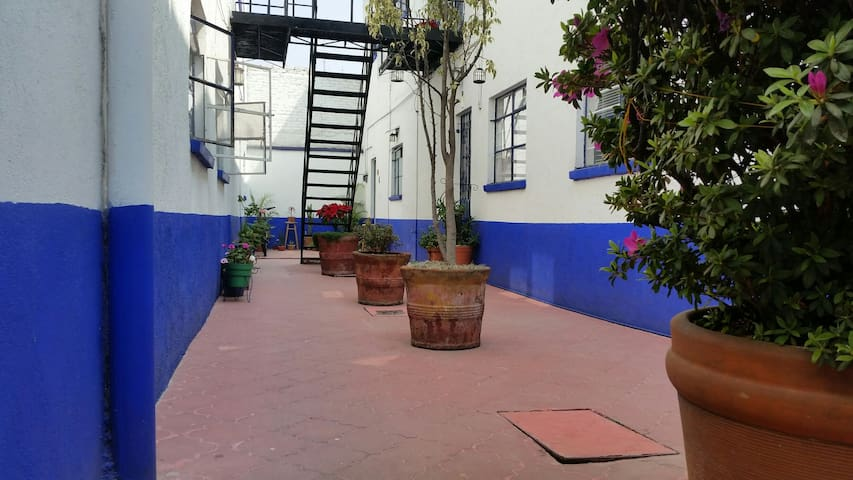☆LOVELY, LOCATED & COZY APARTAMENT IN COYOACÁN☆ :)