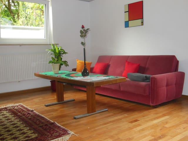 Complete and Lovely Holiday Home in the Souterrain - Forchheim - Appartement