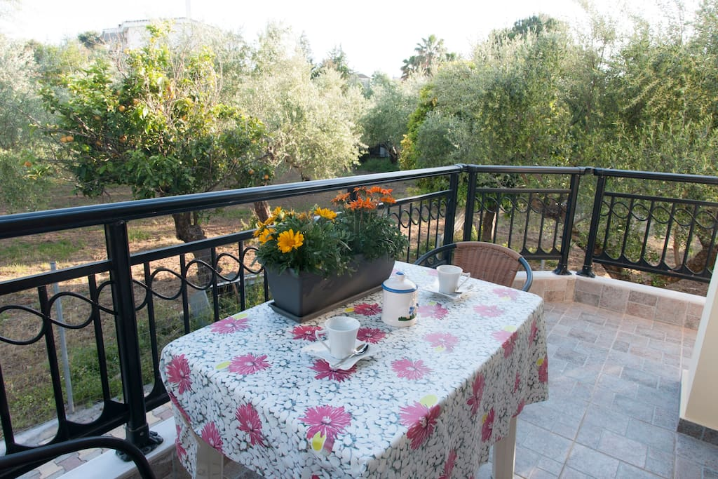 Beautiful quite balcony among the olive trees(1st studio)