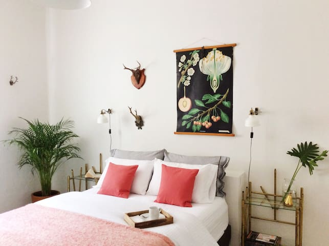 Cozy Apartment @ Colonia Americana - 瓜達拉哈拉 - 公寓