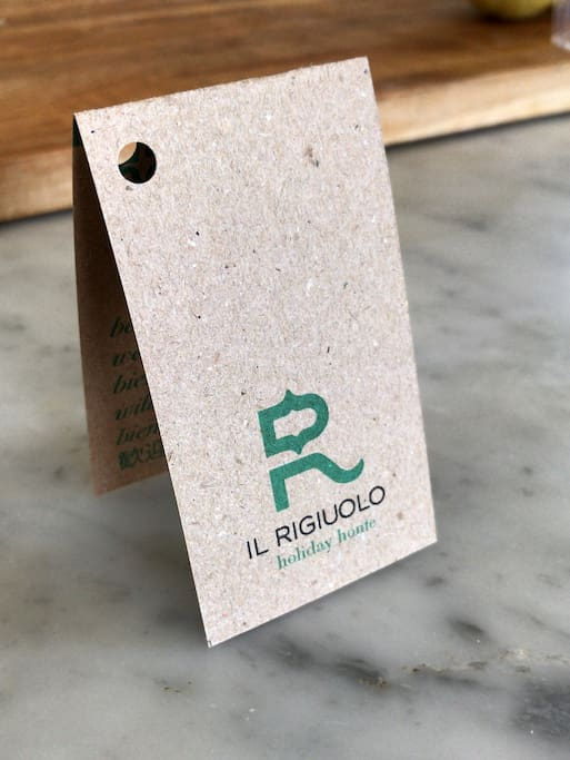 Logo il Rigiuolo