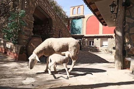 Alojamiento  Cuenca con Animales de Granja