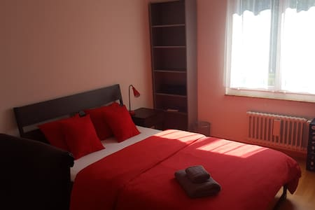 Cosy room, 2 min walk to the train station. - Adliswil - Appartement