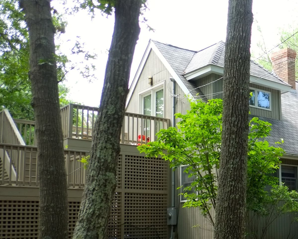 Treetop views from private deck.