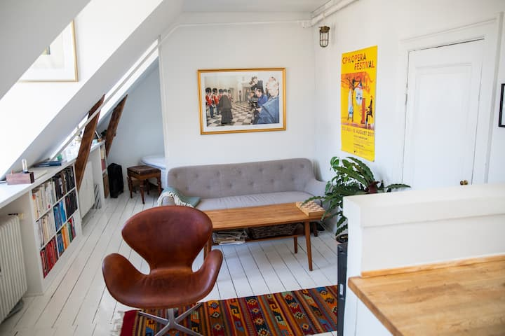 Bright and cosy rooftop apartment in central CPH