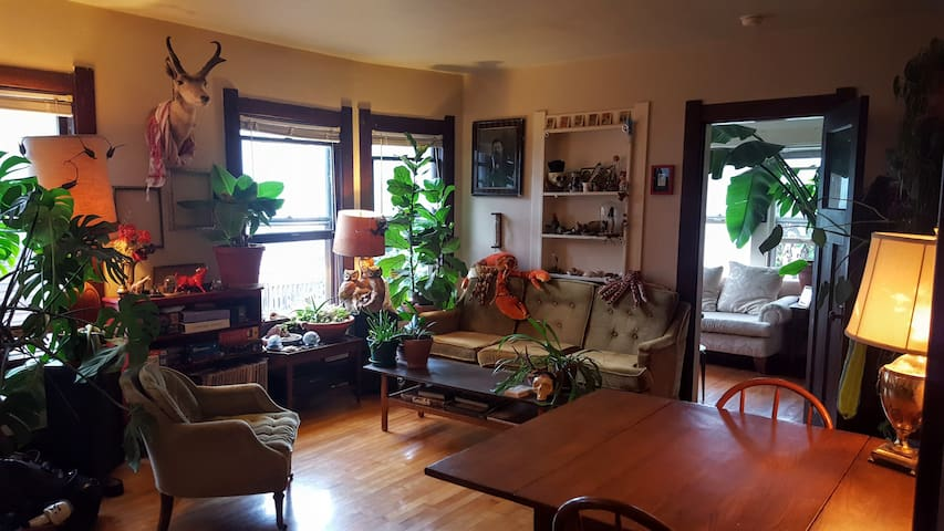 "Quirky ""Greenhouse"" in Hip Madison Neighborhood - Madison - Apartamento"