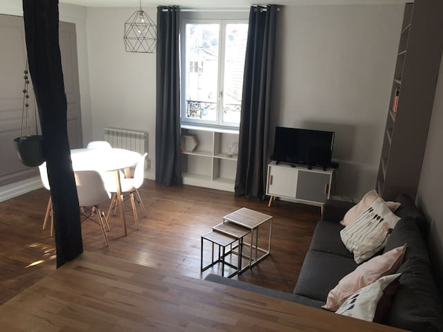 Charmant appartement Blois centre