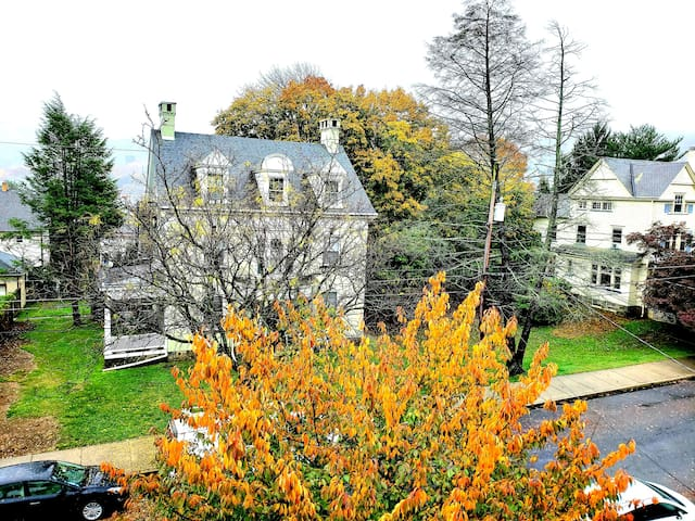 Fall foliage and seasonal fog, as viewed from this apartment.