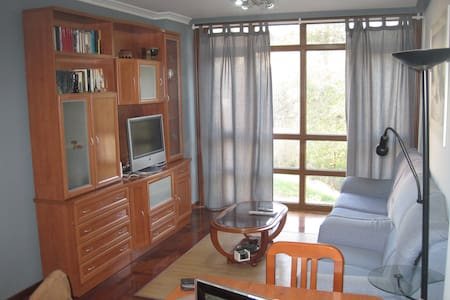 Spacious apartment in the center of Gondomar