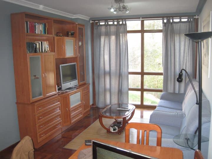 Spacious apartment in the center of Gondomar