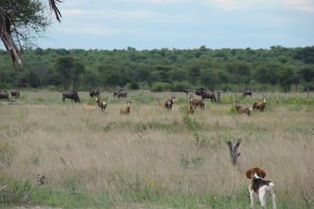 Makalaan-Safaris a family run Game Farm